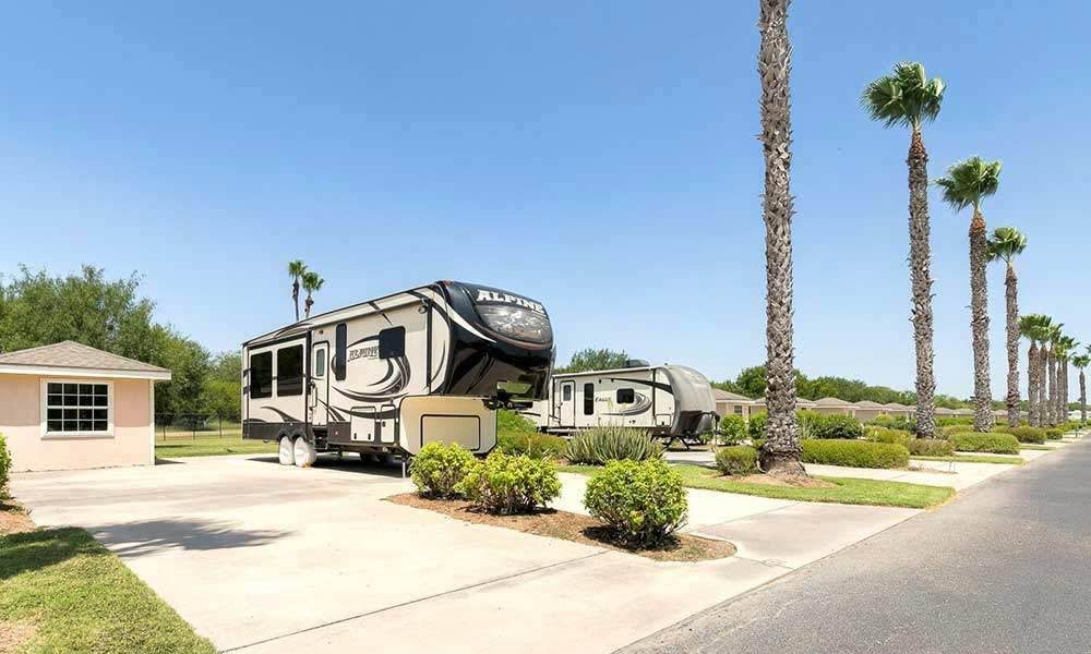RVs parked in ample spaces overlooked by palm trees