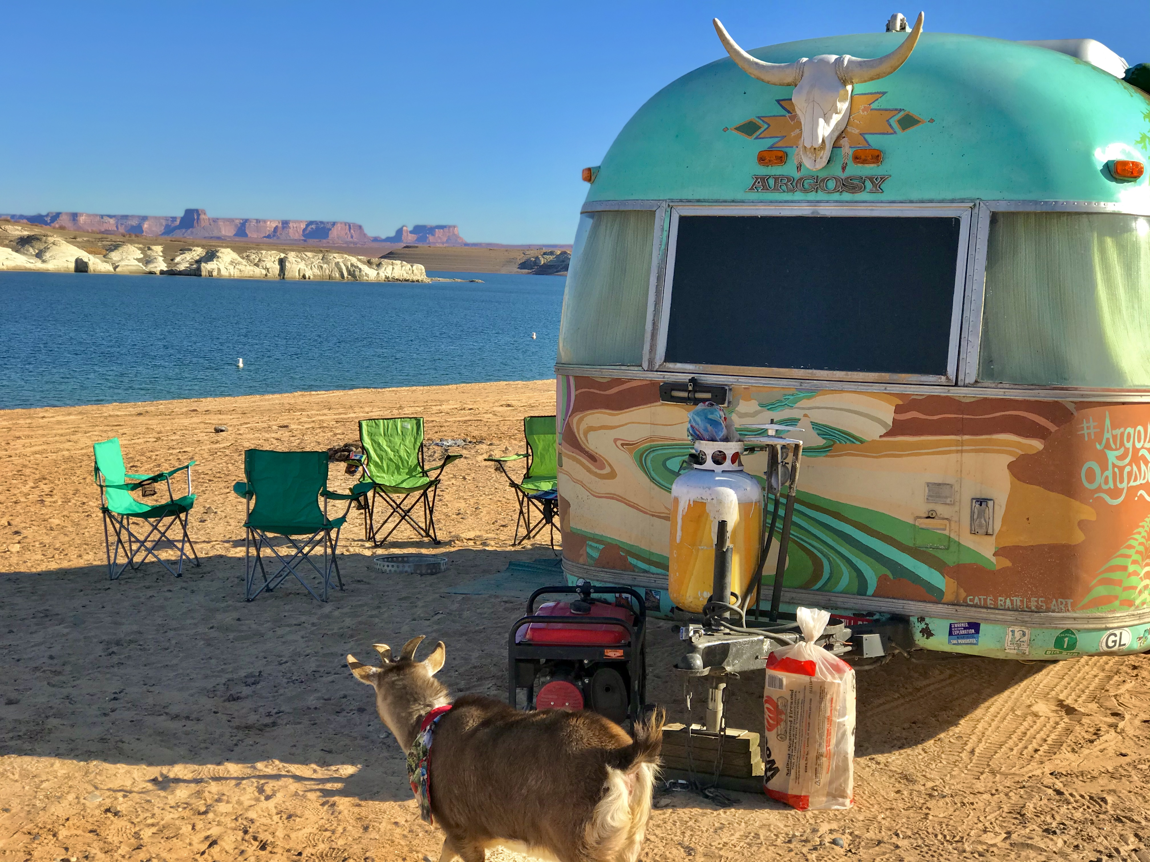 A goat in front of a colorfully painted Airstream near a lake.