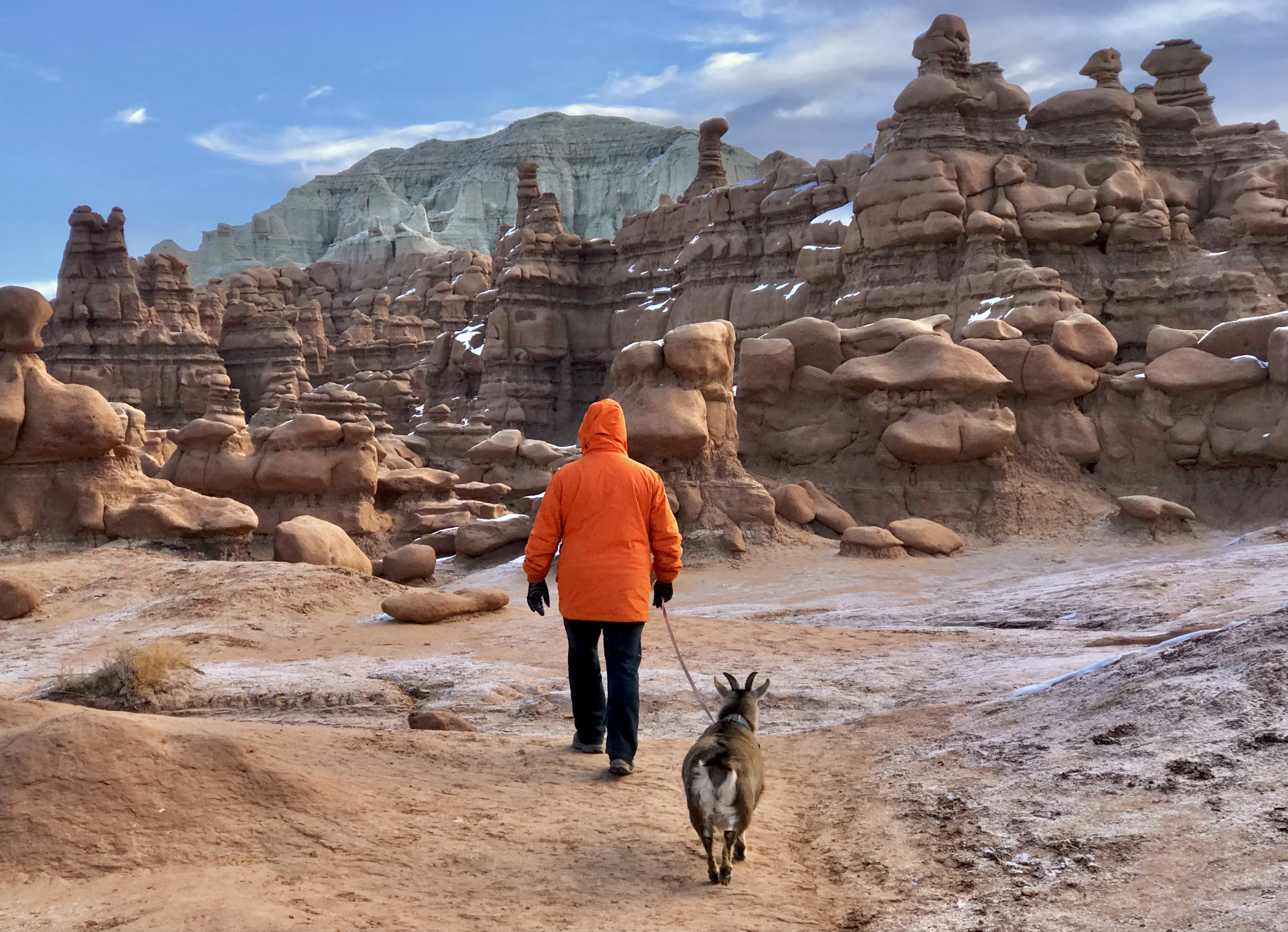 Person in orange hoodie walks with goat on leash through rugged geological formations.