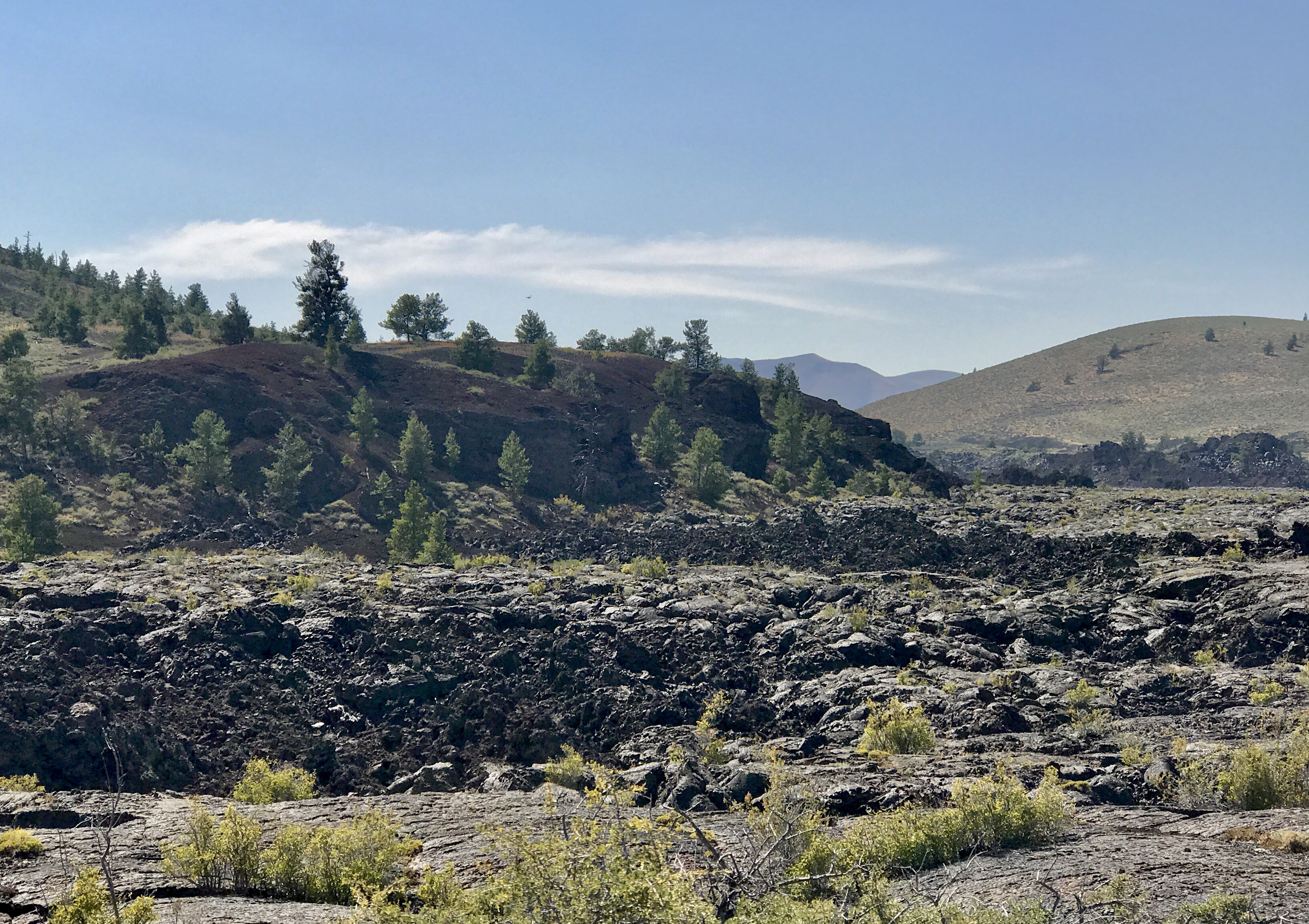 Ancient lava forms broken ground in view of a forest on the horizon.