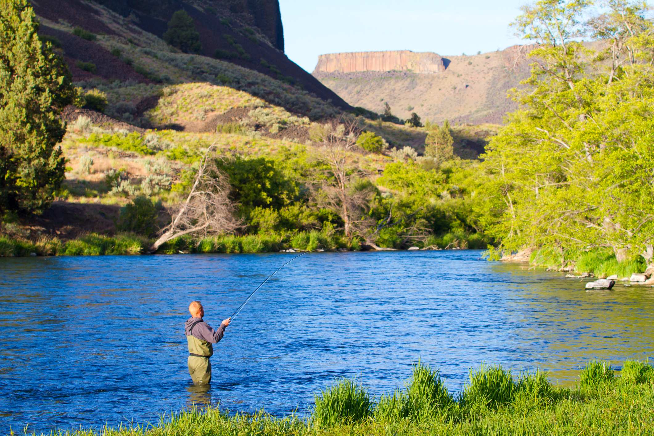 An experienced fly fisherman wades in the water of a powerful river..