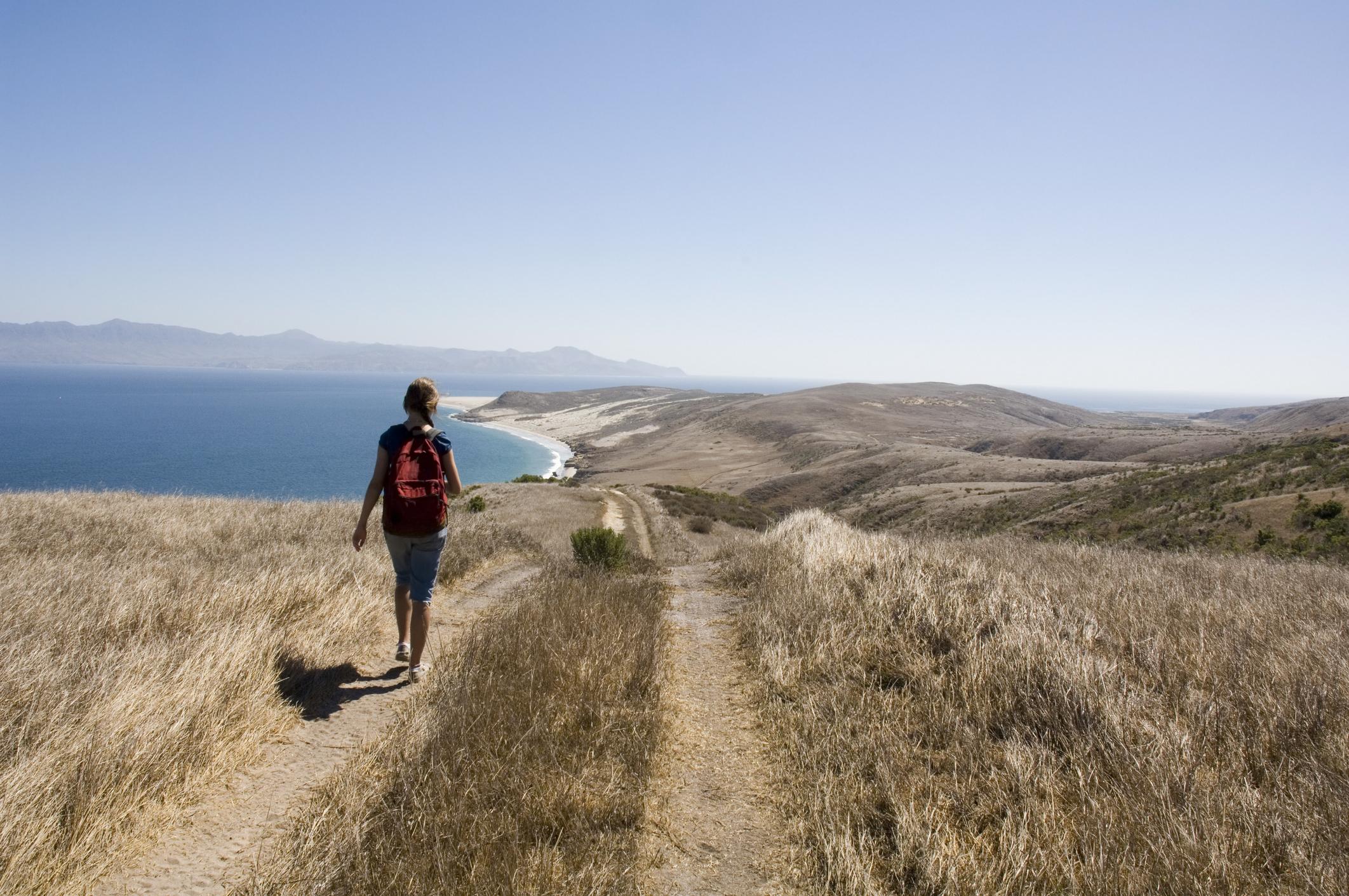 A lone figure ambles down a trail along an ocean shore.