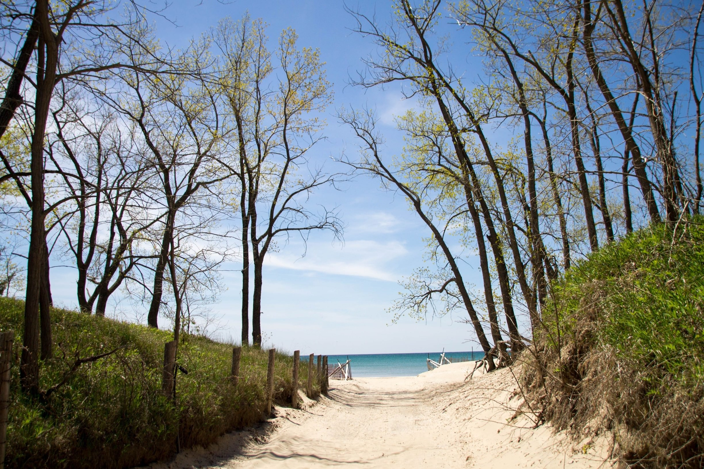 Quinte's Isle Campark — A beach leading into a lake that stretches to the horizon.
