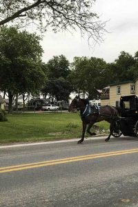 Horse pulls an Amish buggy down a street.