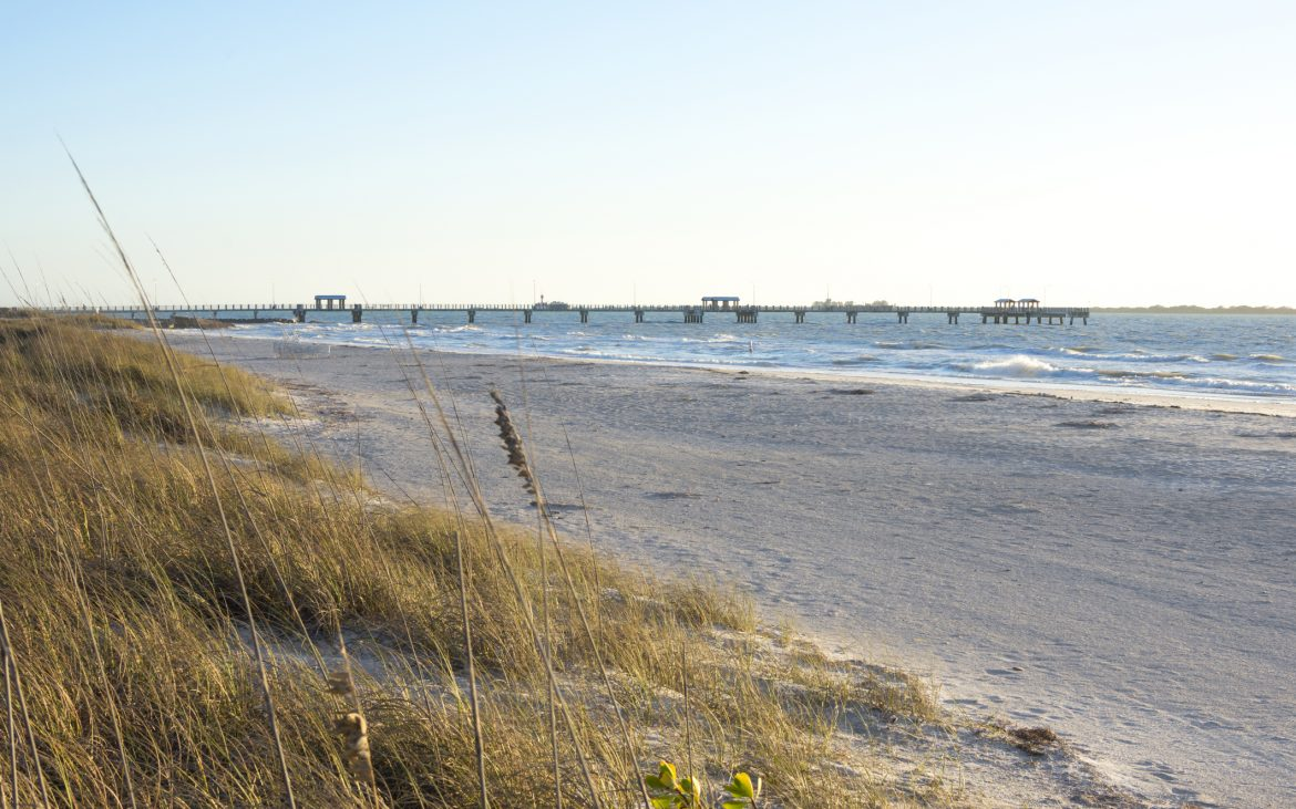 Scenic sandy beach with sea oats and gulf fishing pier at Fort Desoto Park in Florida on sunny day