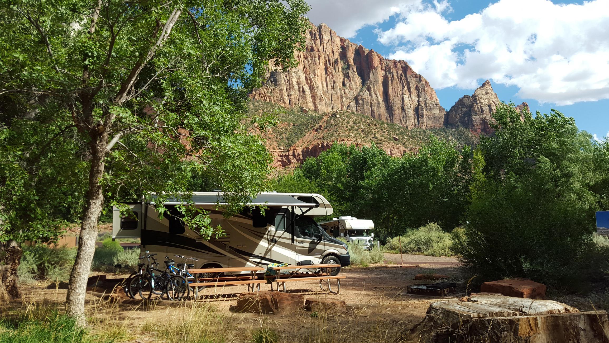 RVs camped in a campsite.