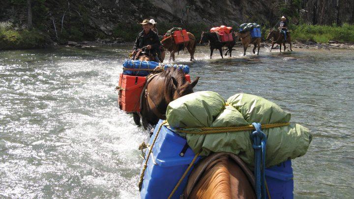 A line of horses crosses a river.
