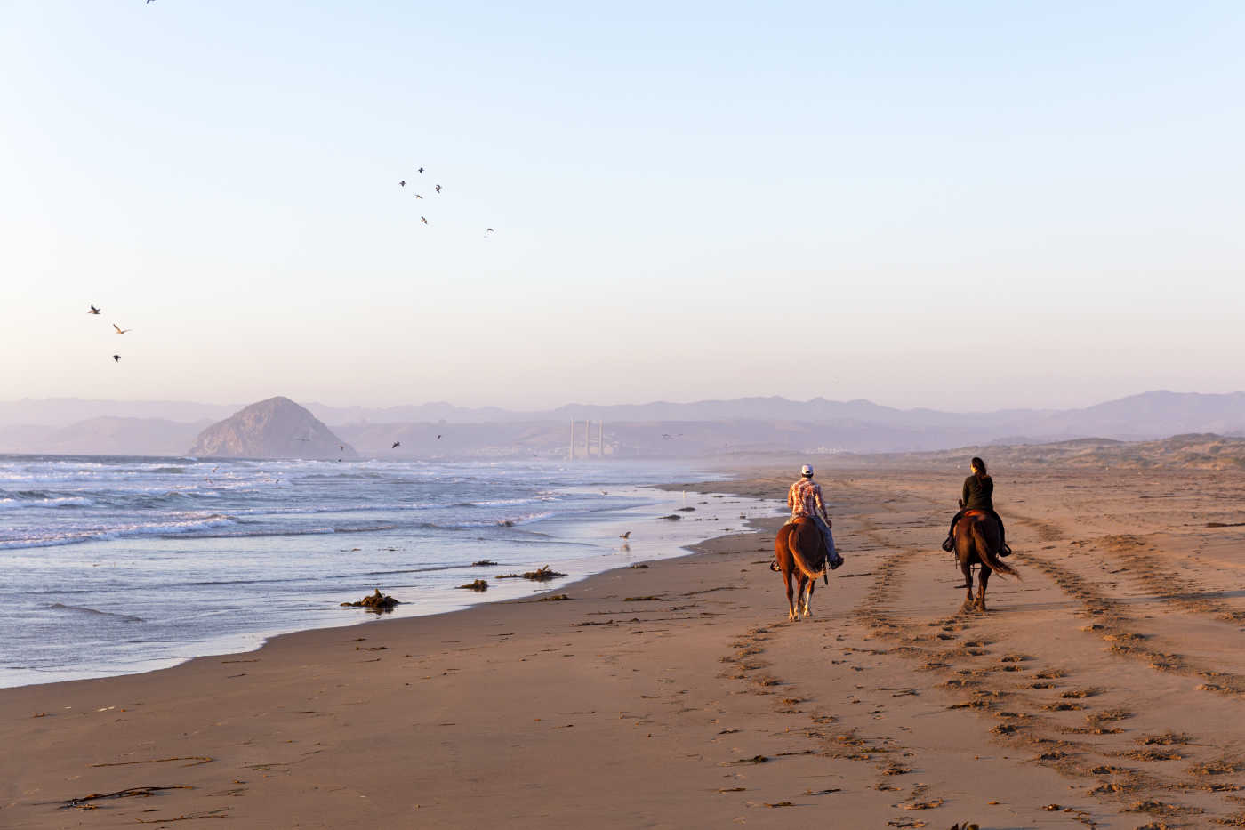 A pair of horse riders trot parallel to the show on a beach.