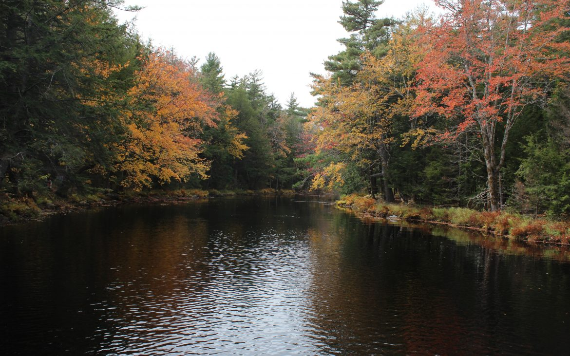 Kejimkujik National Park and National Historic Site, lake with autumn colored trees