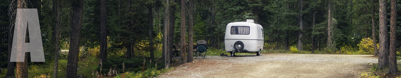 An RV trailer parked amid forest greenery.