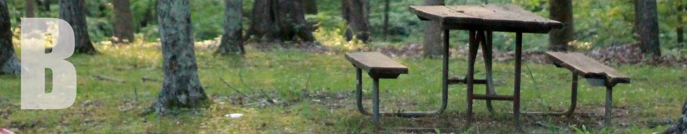 A picnic bench in a meadow.