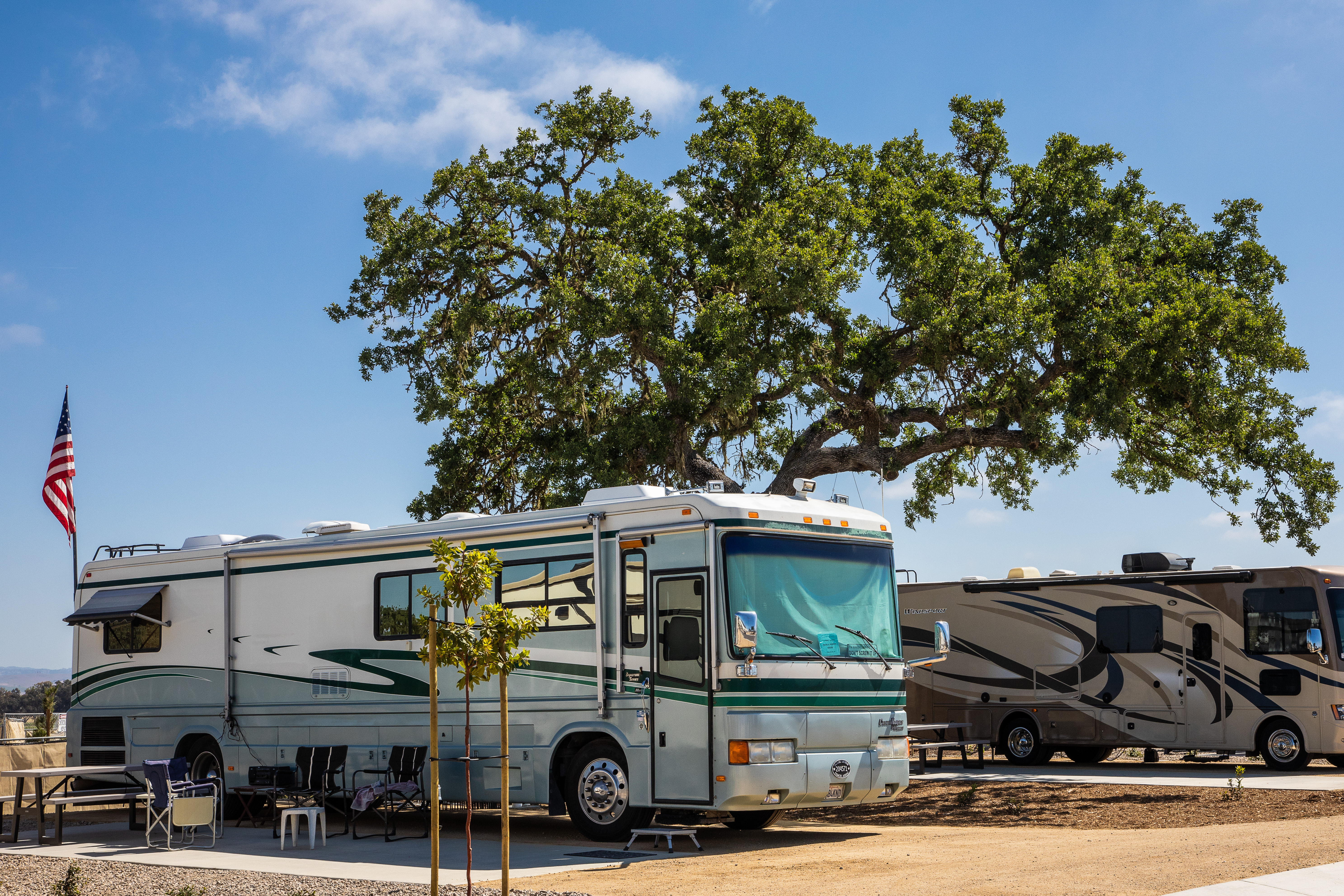 RV parked under an ample, shade-providing oak.