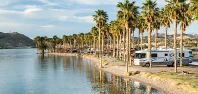 Motorhome parked on a river bank under a row of palm trees.