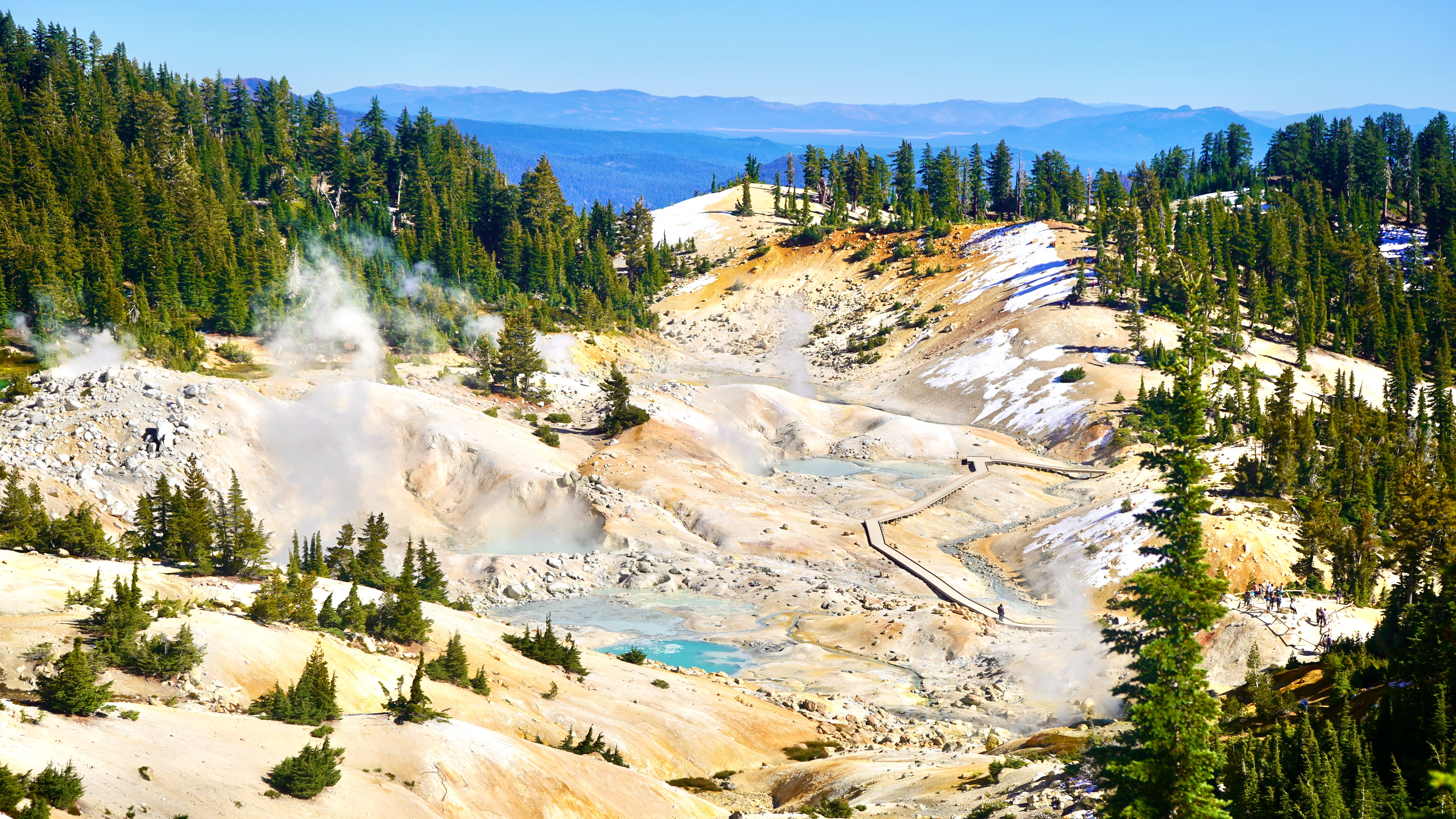Steam rises form hot pools surrounded by firs.