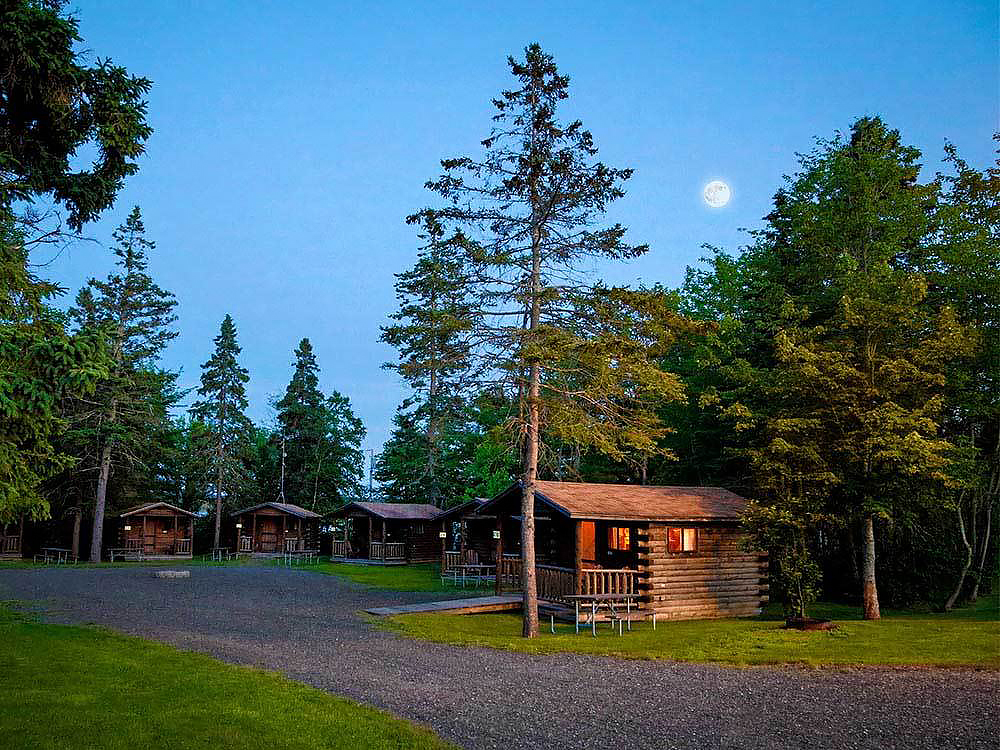 Cabins at dusk surrounded by tall pines under a full moon.