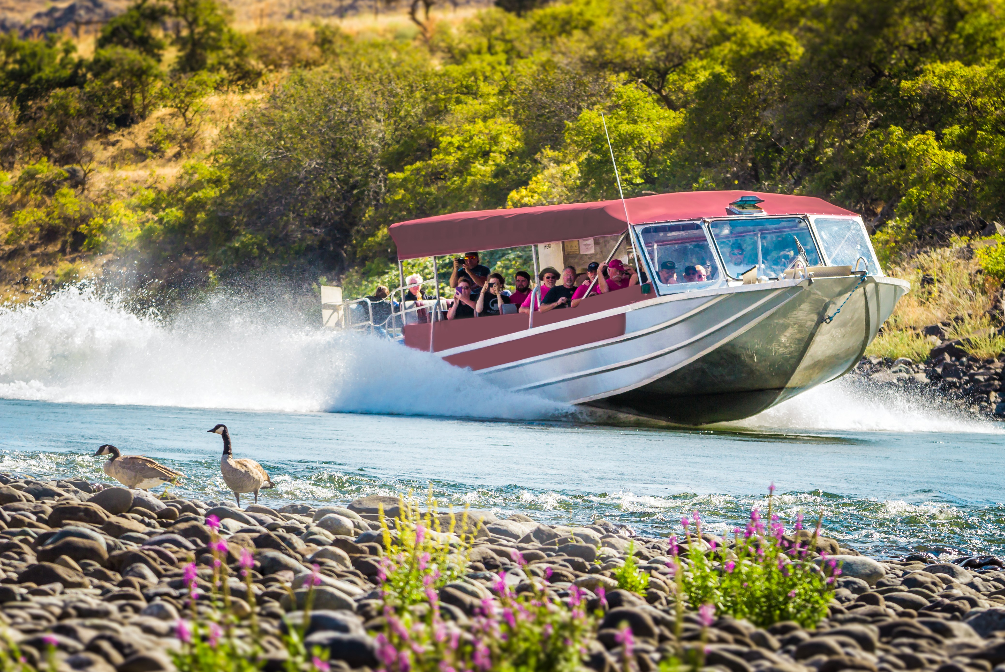 North America's Deepest River Gorge — A jet boat with red canopy skims across a river.