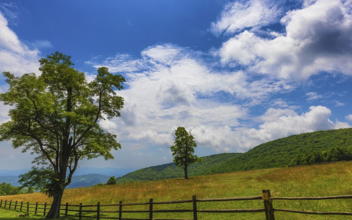 fenced pasture at Grayson Highlands State Park in Virginia