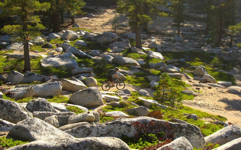 Mountain Biking in Lake Tahoe, California