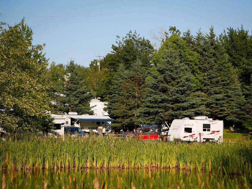 RVs parked along the reedy bank of a pond.