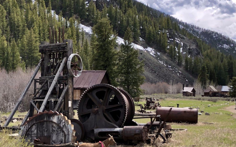 Goat explores the mining equipment strewn around Custer, Idaho