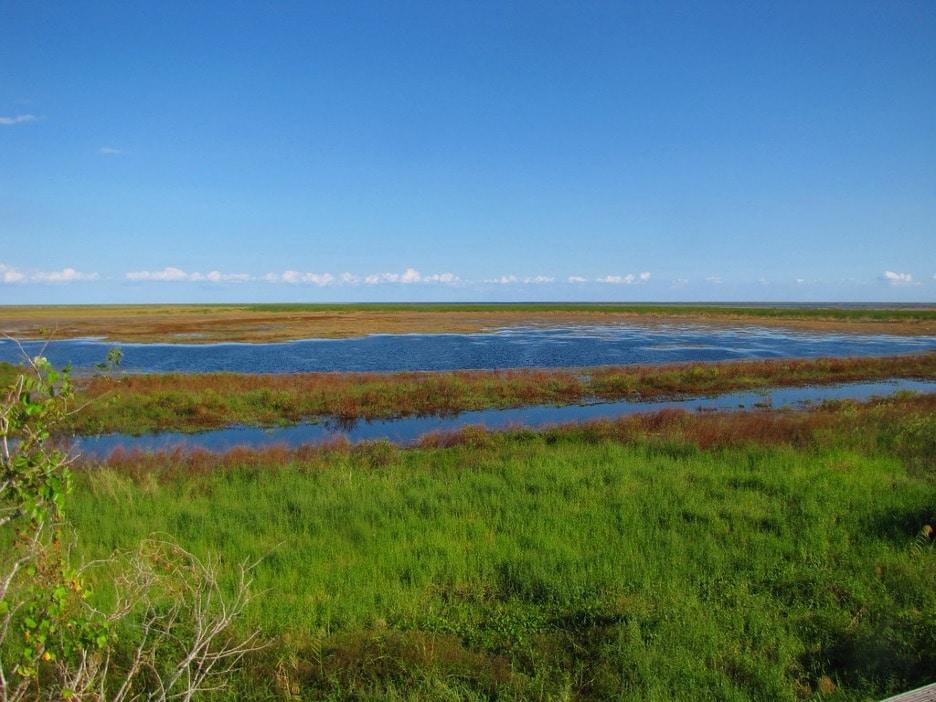Lake Okeechobee  Glades County