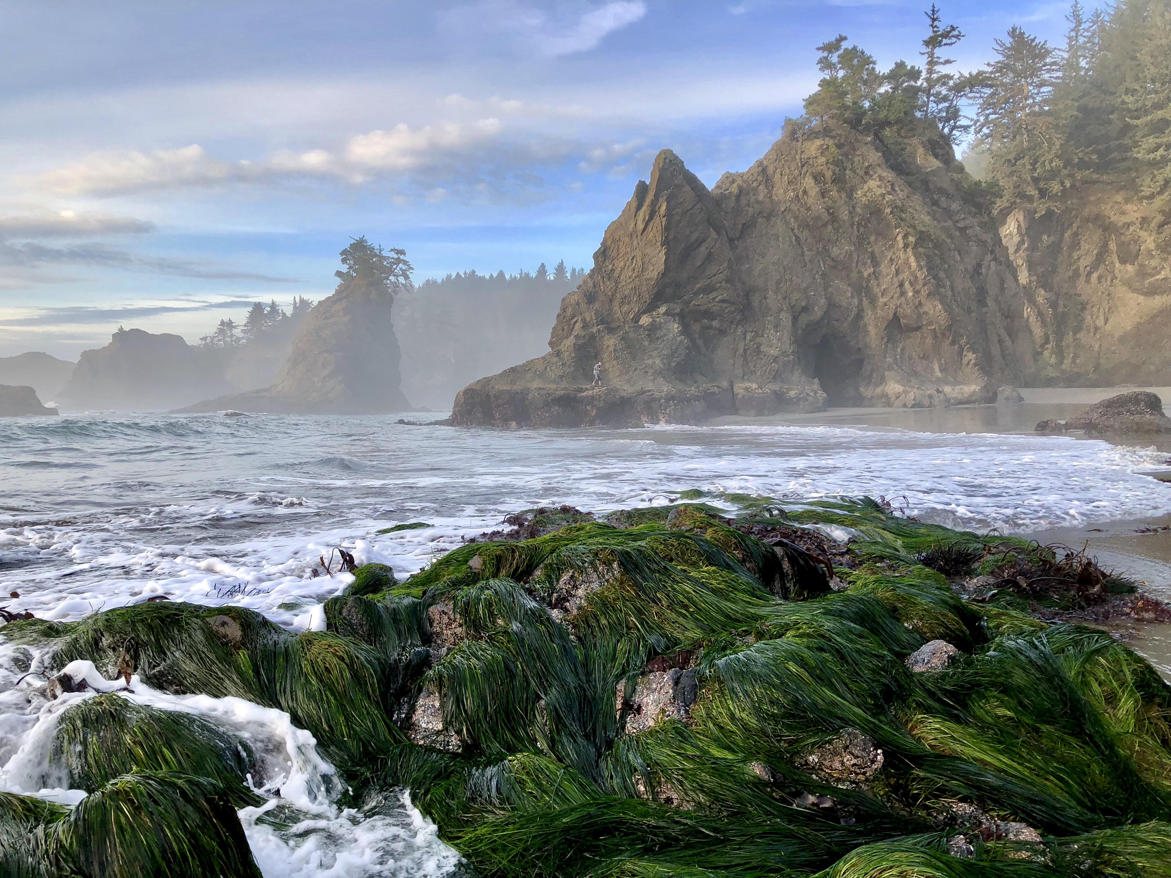 Waters churn on a rugged coastline.