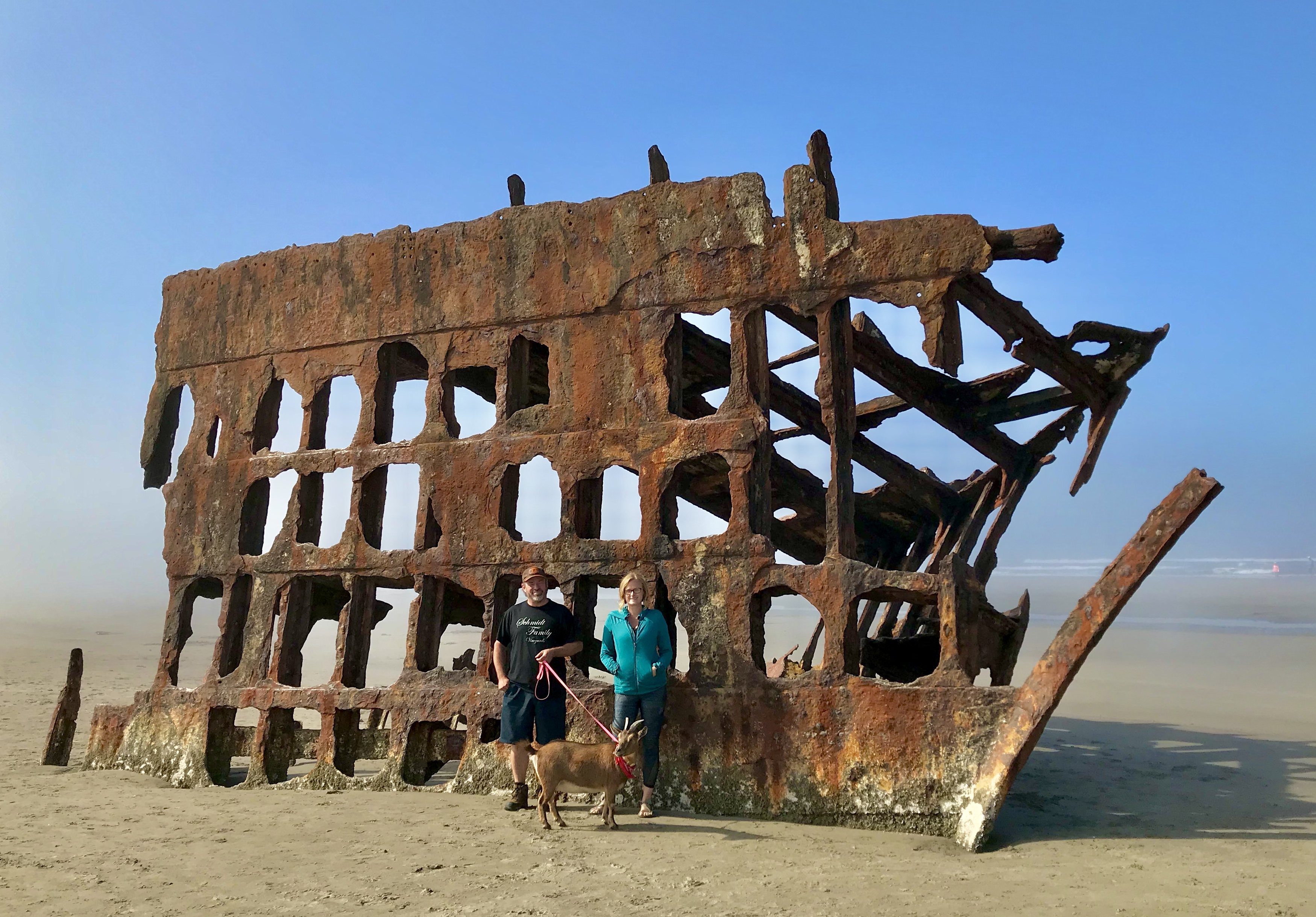 Two people and a goat stand in front of the hulk of a damaged ship.