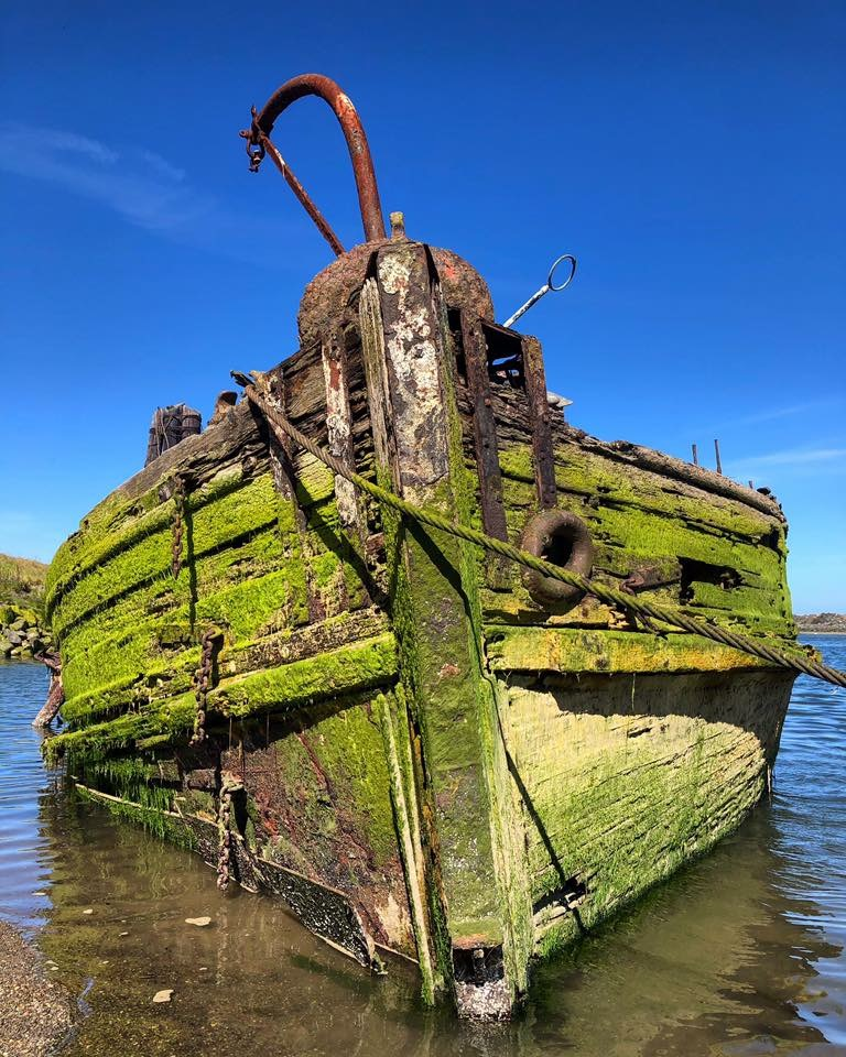 A moss-covered ship hull run around in shallow water.