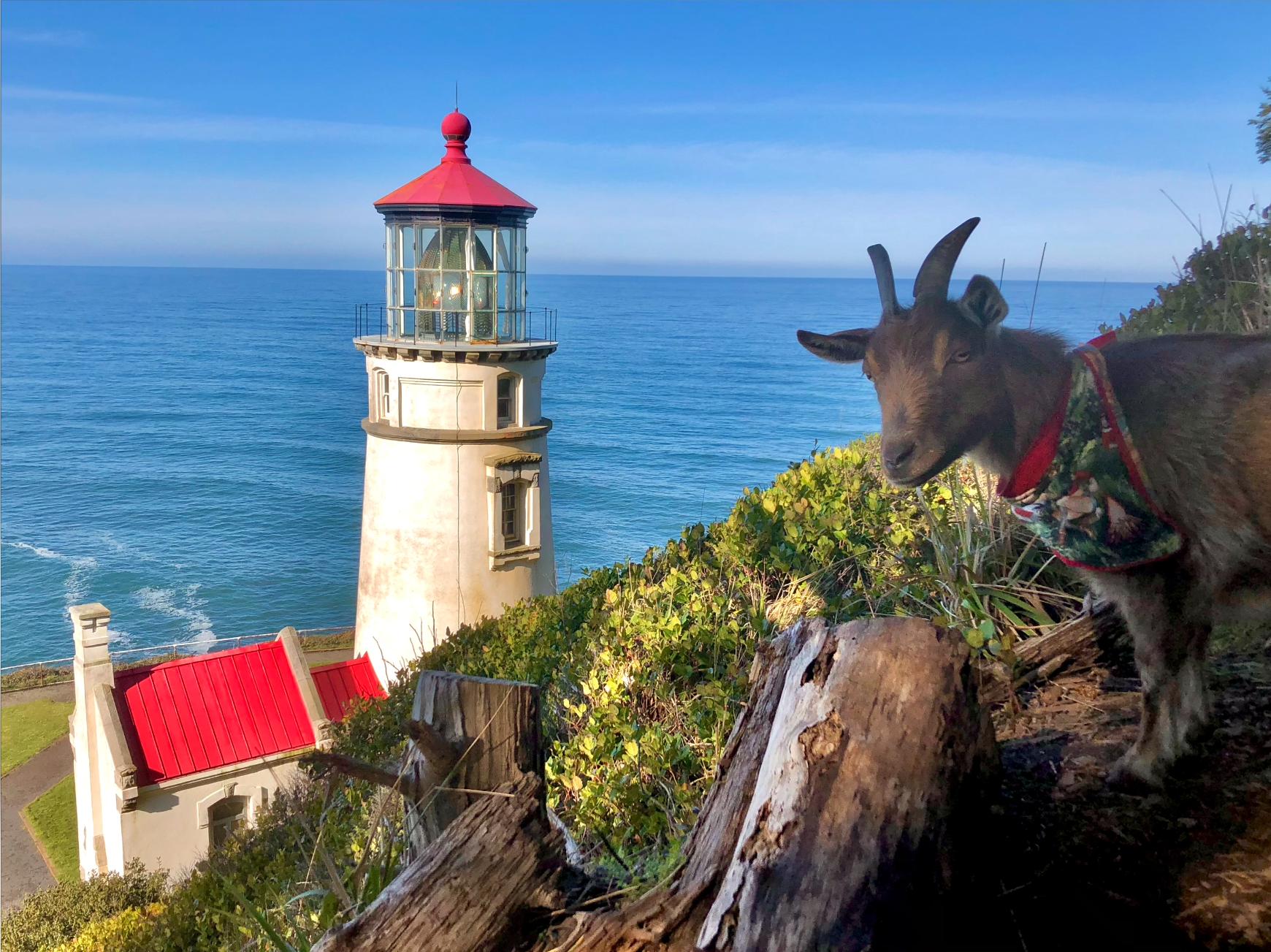 Lighthouse against a clear ocean coast.
