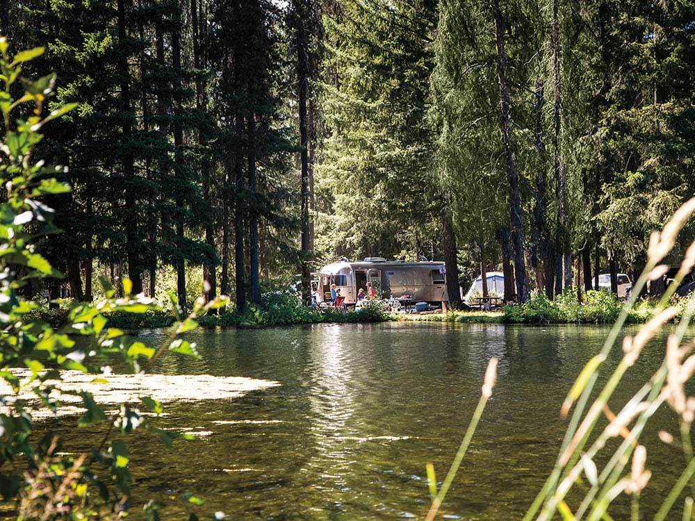 Airstream trailer parked near the banks of a pond under towering fir trees