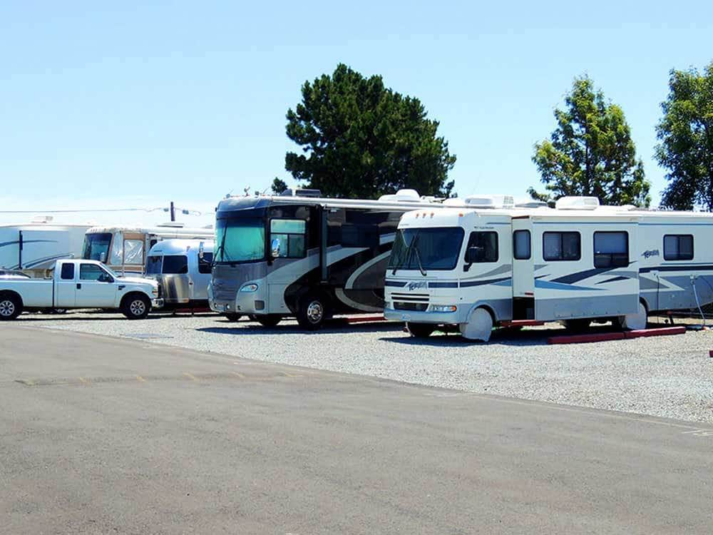 Motorhomes parked in a row on gravel.