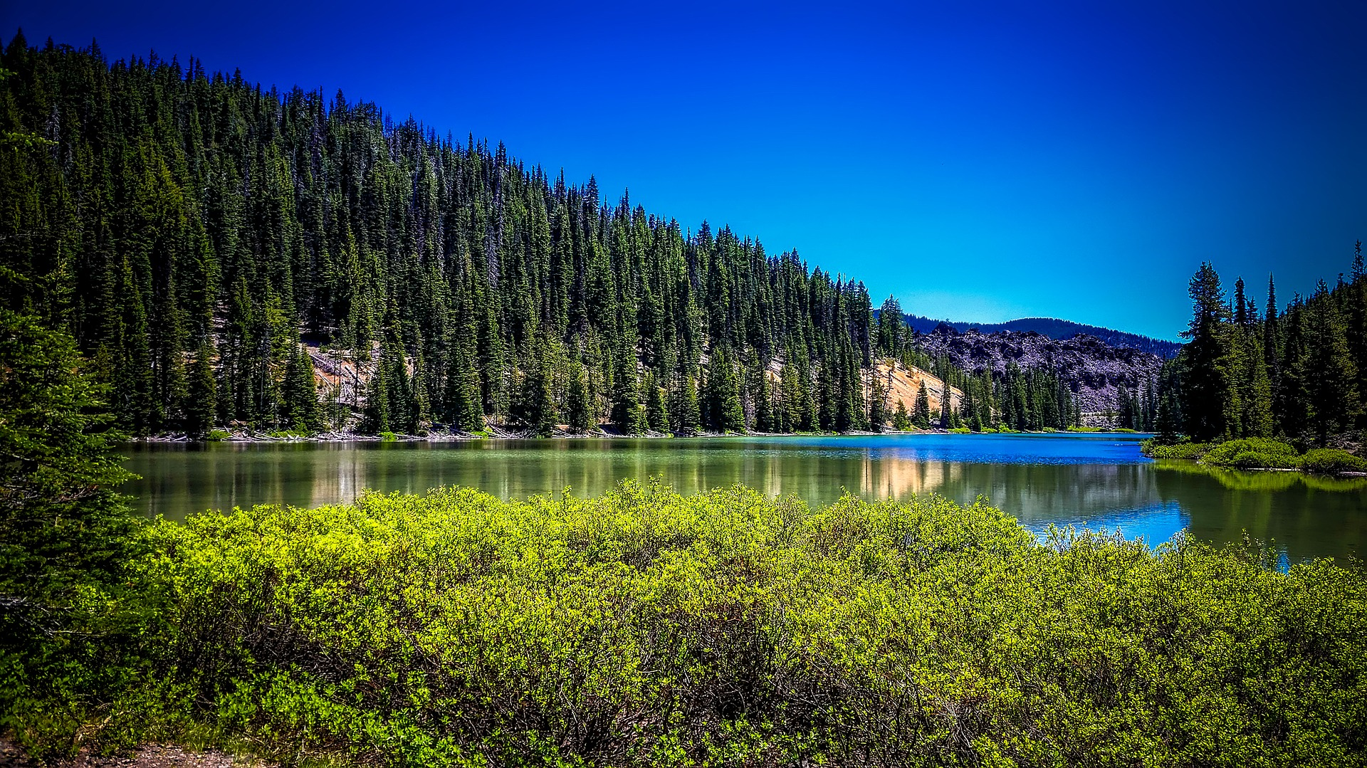 Placid, pretty lake surrounded by tall trees.