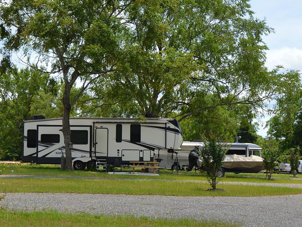 RVs parked under sprawling, shady trees.