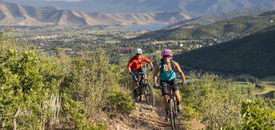 Two mountain bikers along a trail