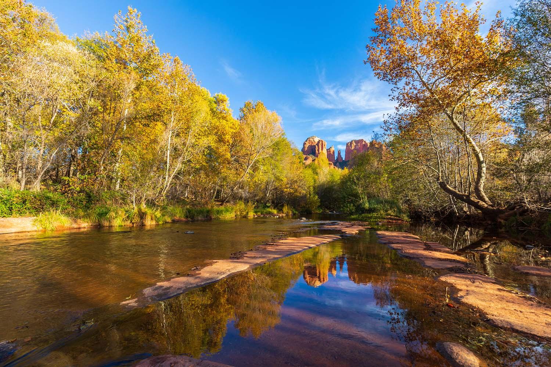 Golden-green aspen trees flank a shallow creek.