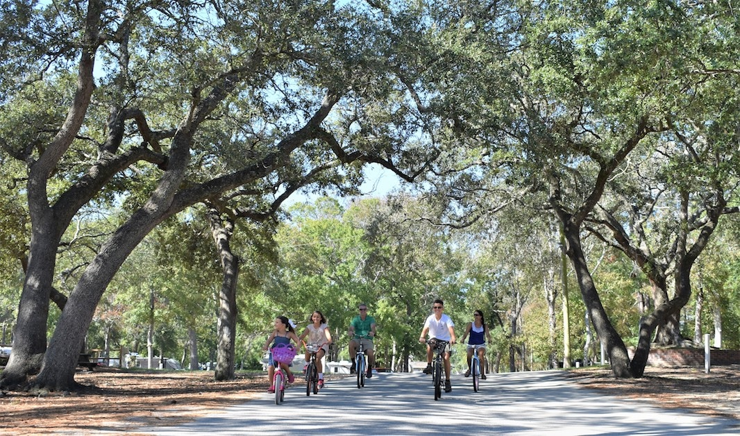 Cyclists riding a bike path in the shade of old oak trees.