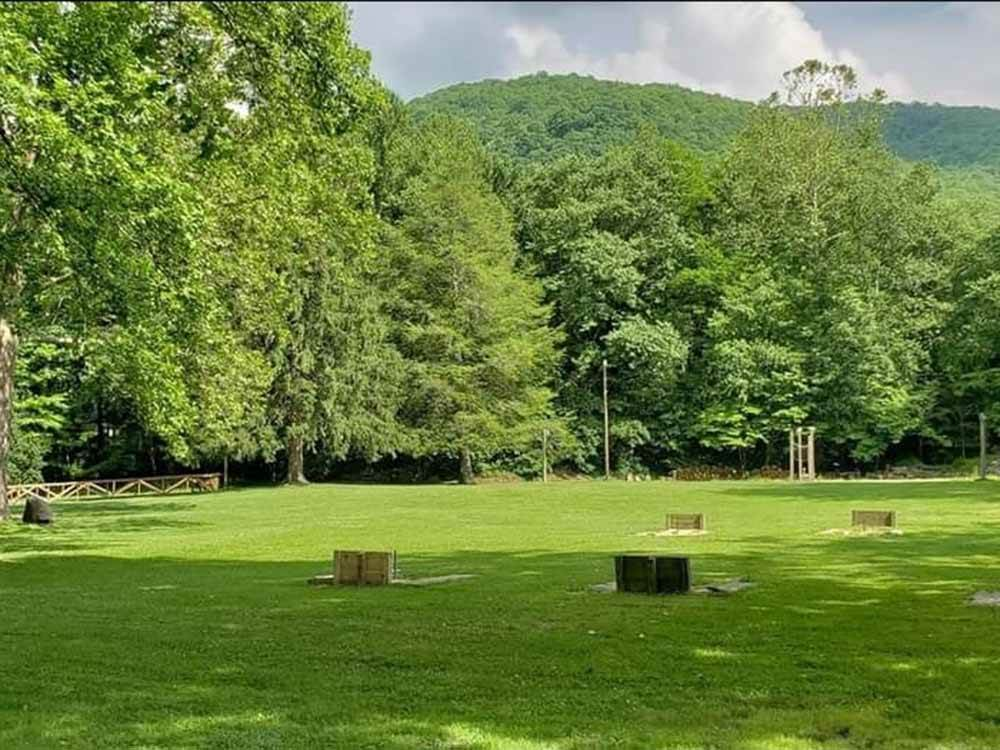 Horseshoe pits on a green grassy meadow with background of green trees.