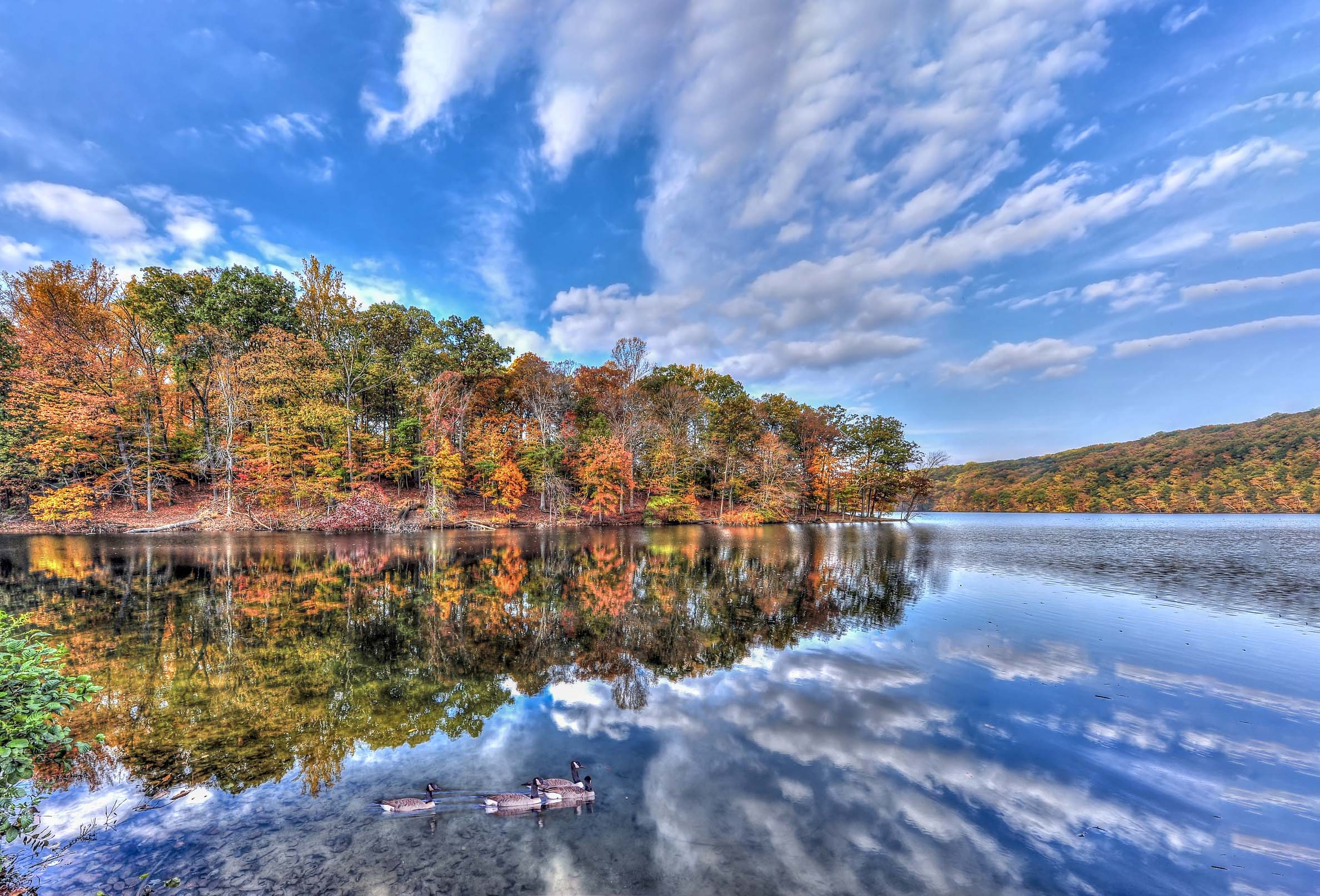 Baltimore's natural side —A shoreline crowded with trees dappled with fall colors reflected on the water.